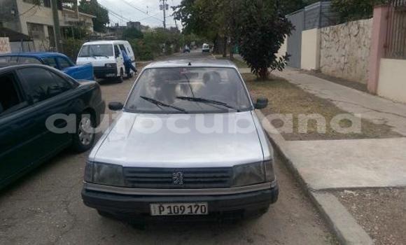 Comprar Usados Carro Peugeot 309 Otro en Cacocum en Holguin