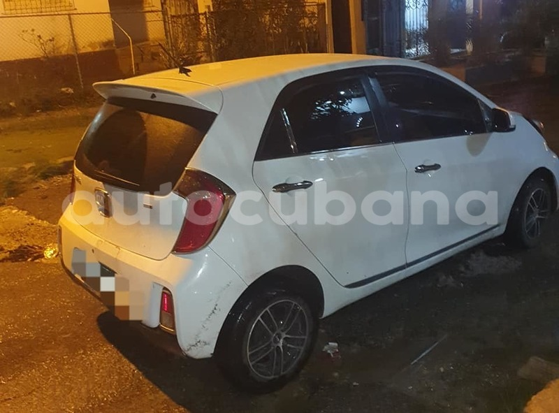 Big with watermark kia picanto habana havana 2516